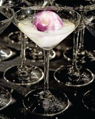 White Orchid Cosmo